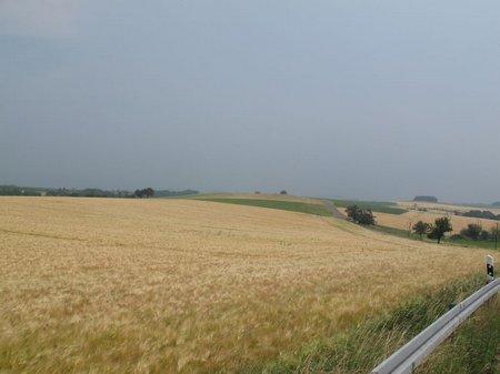 Weite Felder in geschwungenem Land