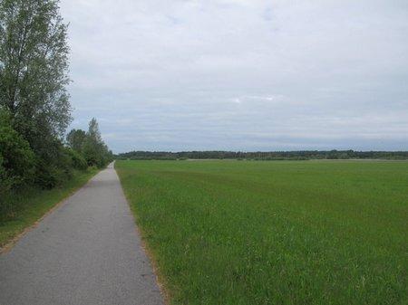 Radweg am Fischland Darß
