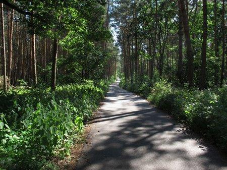 Auch der Oder-Neiße Radweg