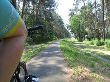 Unterwegs auf dem Radweg